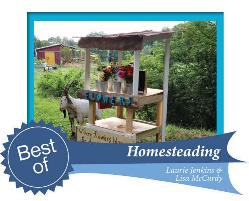 Web Homesteading